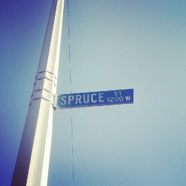 imcameron:  Spruce St (Taken with Instagram)