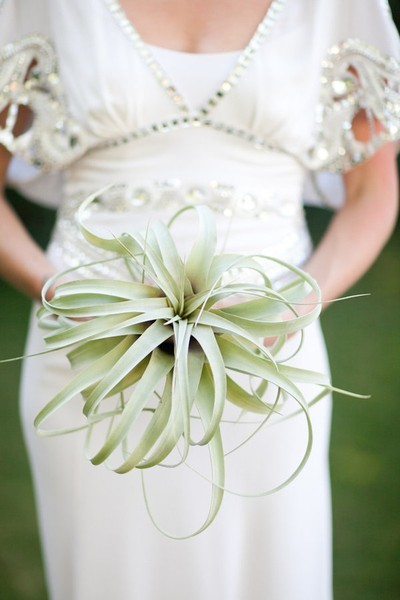 california eco friendly bride