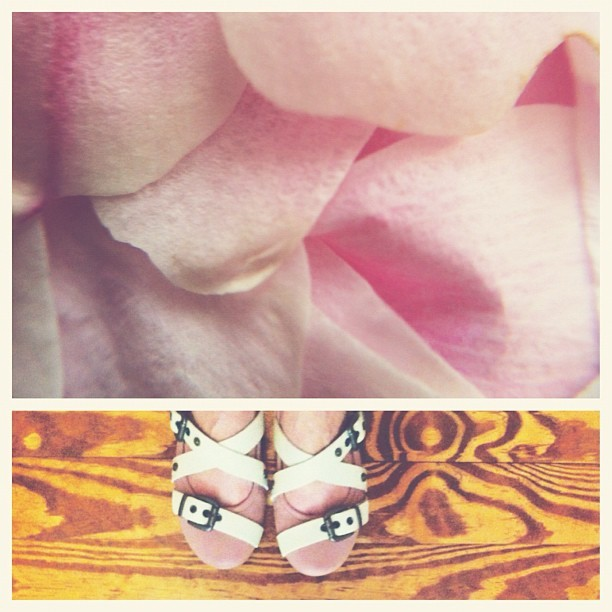 pink / brown #ccdiptychs  (Taken with Instagram)