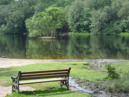 Bracebridge Pool, Sutton Park, a bench for quiet reflection.