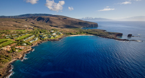 laughingsquid:  Oracle CEO Larry Ellison Buys 98% of Hawaiian Island Lanai  Today in Larry Ellison's ongoing plan to actually become a real-life Hank Scorpio.