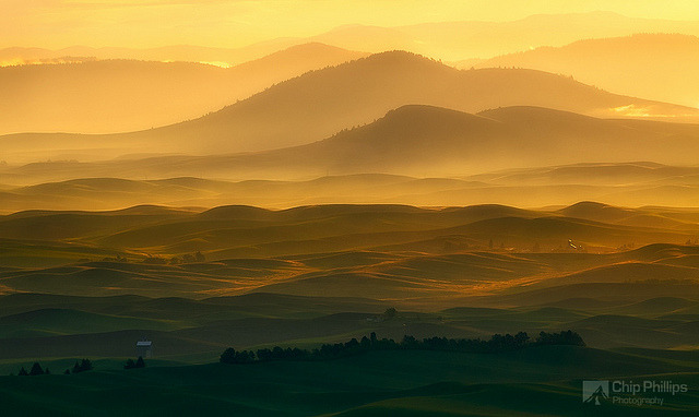 Distant Hills Palouse by Chip Phillips on Flickr.