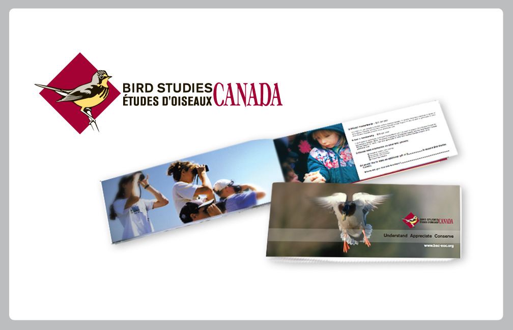 BRAND IDENTITY:BIRD STUDIES CANADABird Studies Canada needed a fresh face.Working through Mindspin Studio in Brantford, the new visual identity was created in two stages. The logo redesign as you see here, and an informational brochure.Working out of Brantford ON, MINDSPIN STUDIO