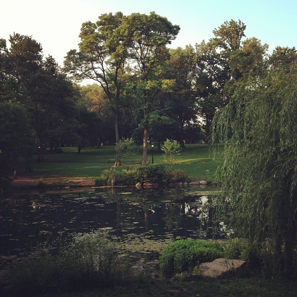 The Pond, Central Park West