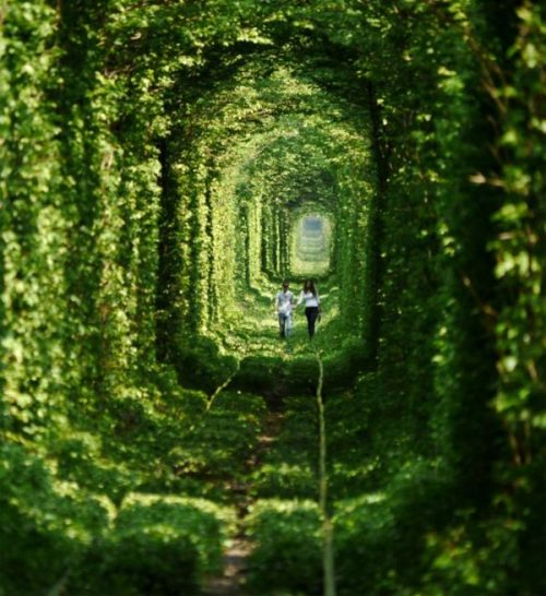 the-hamptons:  Tunnel of Love, Ukraine.