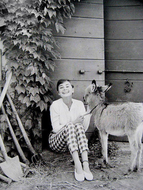 Audrey Hepburn. on Flickr.