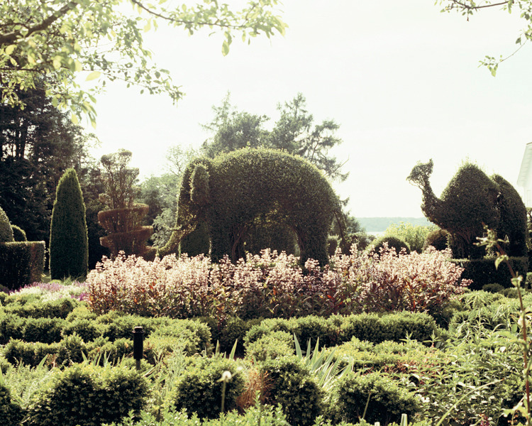 ryanpfluger:  The Passage - topiary garden, 2012
