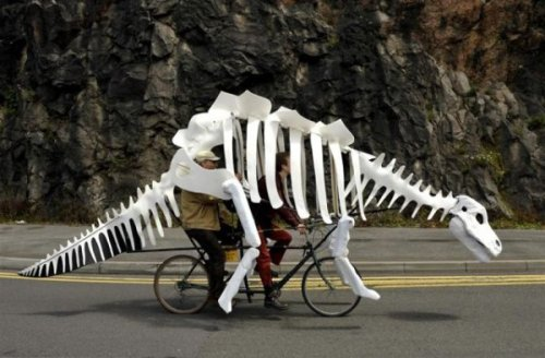 Dinosaur Skeleton Tandem Bike The bike before time.