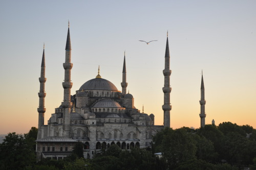 hollys-travels:  Sultanahmet Mosque (Blue Mosque), Istanbul, Turkey. View from roof-top terrace of Seven Hills Hotel.