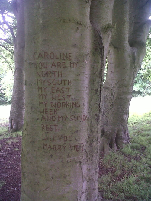 witchchild:  Also I found this while in the forest, it made me happy