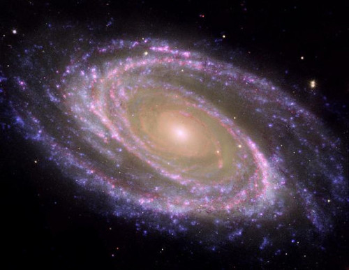 spacettf:  M81 Galaxy is Pretty in Pink by NASAJPL on Flickr. Via Flickr: The perfectly picturesque spiral galaxy known as Messier 81, or M81, looks sharp in this new composite from NASA's Spitzer and Hubble space telescopes and NASA's Galaxy Evolution Explorer.