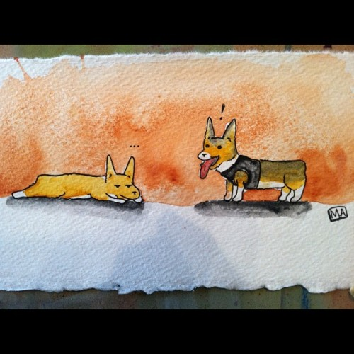 Passive Toby: Aggressive Beau for @dkbcorgi #corgi #illustration #watercolor (Taken with Instagram at 💡)