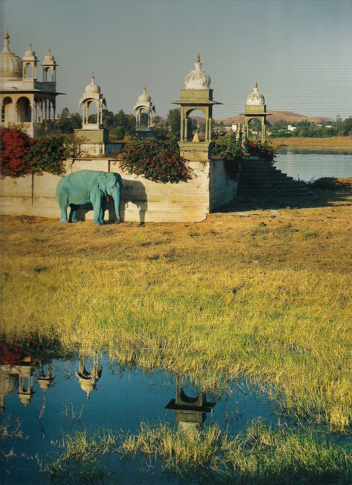 "stopdropandvogue:  ""Blue Elephant and Temple, Dungarpur, Rajasthan, India"" photographed by Tim Walker, 1999"