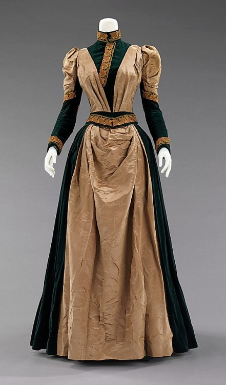 Afternoon Dress 1885 The Metropolitan Museum of Art