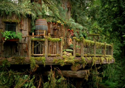 voiceofnature:  Lovely treehouse