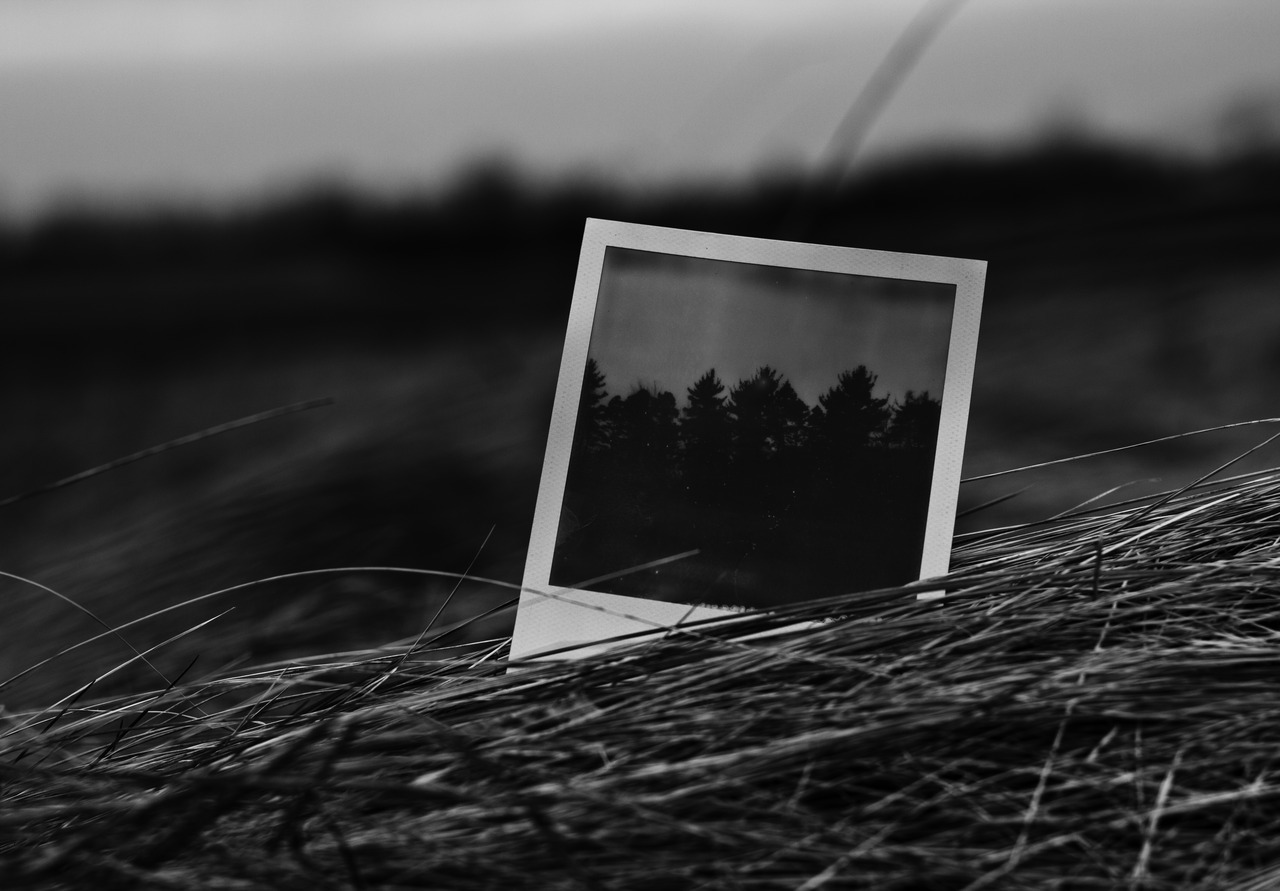 Polaroid in the grass. I might try and do something with this I think hmm C.F.B.