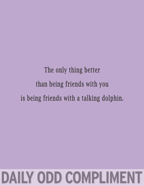 "dailyoddcompliment:  ""Friendly Dolphin"""