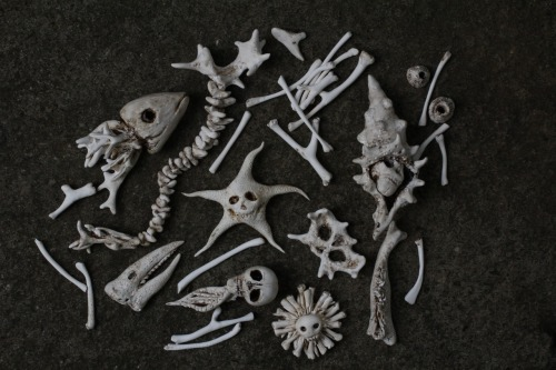 """salty bones"", polymer, 2012 these will be going in my nest of ""coral"" wendy wallin malinow inkhead"