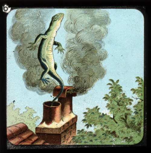 "Magic lantern slide for ""Alice in Wonderland."""