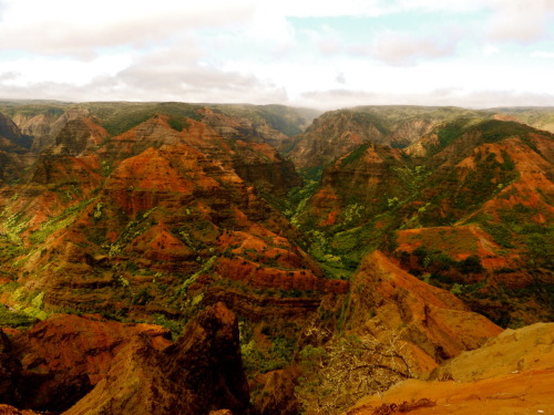 Wimea Canyon, Kauai , Hawaii