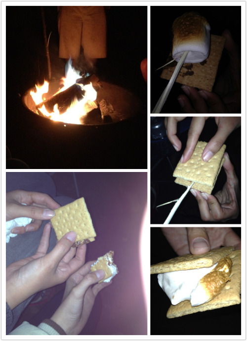 S'mores in the making! Campfire over at river side campground; near crater lake- Oregon