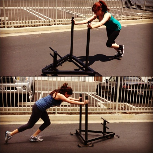 Photo of the day, prowler time!