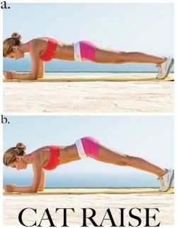 healthyshorty:  This is seriously one of the best ab exercises out there.