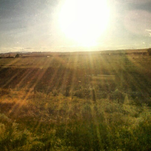 #Sun #Prairie #trainride #Montana #Badlands (Taken with Instagram)