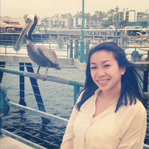 Elana and Mr. Pelican #redondobeach #pier #letsgotothebeachbeach (Taken with Instagram)