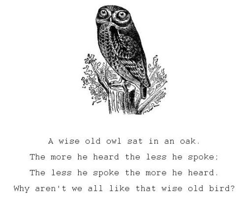 smalltown-blues:  A wise old owl