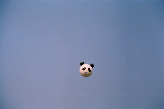 gailygirl:  Panda balloon! :) lomographicsociety:  Lomography in Colors - Wild Blue Yonder