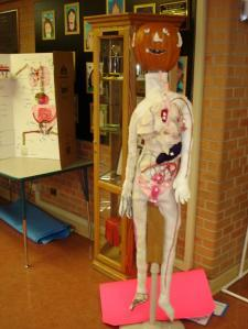 (via Human Body Project Examples « Mrs. Du Houx's Science Classroom)