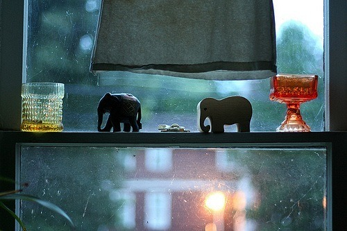 These little ones would look oh so sweet on my window too….