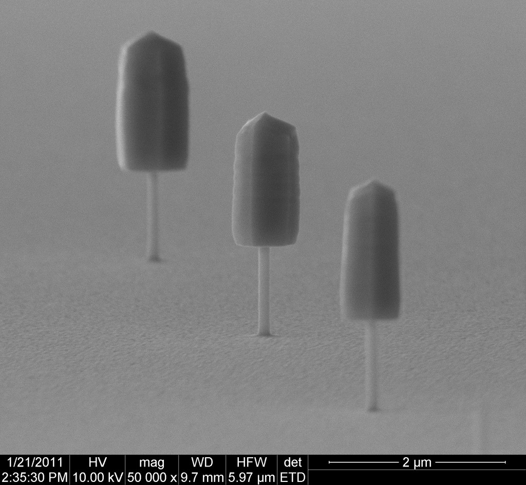 Nano-popsicles (by FEI Company)