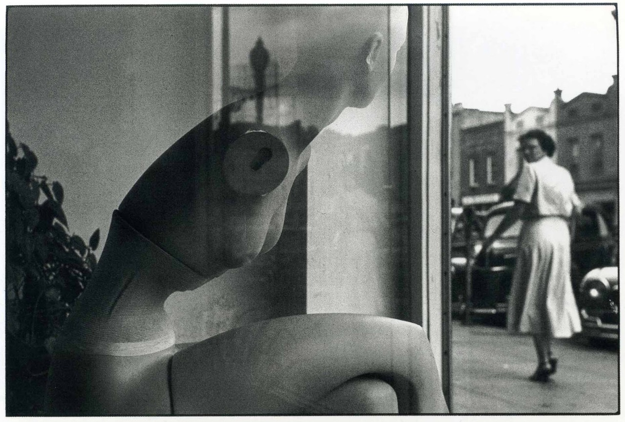 bildwerk:  ELLIOTT ERWITT Wilmington, North Carolina, 1950
