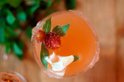 thirsty thursday | grapefruit mint bellini
