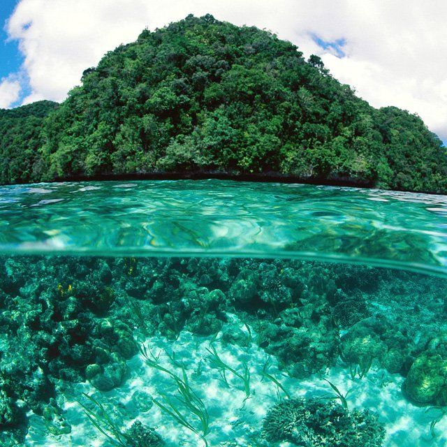 aquaticwonder:  Rock Islands at Palau
