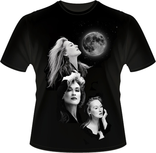 Three Meryls and a moon t-shirt.  (h/t CoryCoryBoBory)