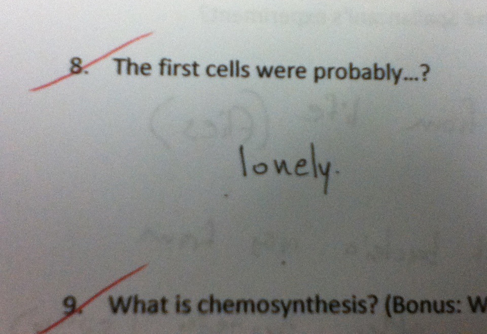 yellowandotherinspiringstuff:  Great inappropriate test answers from young children more here   Lol