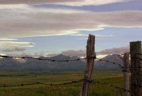 Fencing in the Rockies - Twin Butte, Alberta on Flickr.