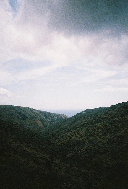 themaxdavis:  untitled by ada hamza on Flickr.