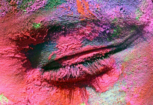 highinthefields:  astickfigureillustration:  unsolnosilumina:  Holi, the Hindu festival of colour. (x)  This has to be the most beautiful celebration on the planet.  It really is the most beautiful celebration.