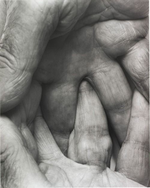 Interlocking Fingers Nº6, 1999 by John Coplans