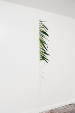 pootee:  Ryan Estep Dirt. Palm Fronds. Cast Skin.  2011