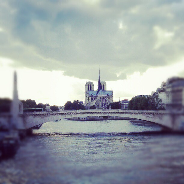 Notre (beautiful) Dame #Paris #NotreDame (Taken with Instagram)