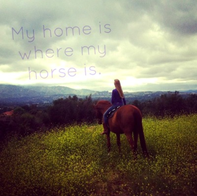 home is where my horse is.