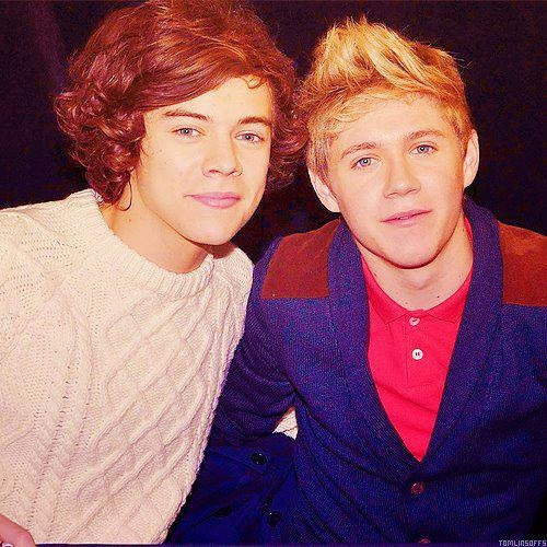 mrs-emma-styles:  Harry and Niall :)