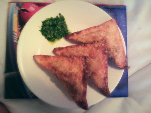 Homemade veggie samosa's to satisfy my Indian cravings :) Although my green chutney just looks like a bunch of cut up leaves with water in it and my samosa's look more like fried wontons. Oh well, it's delicious :D