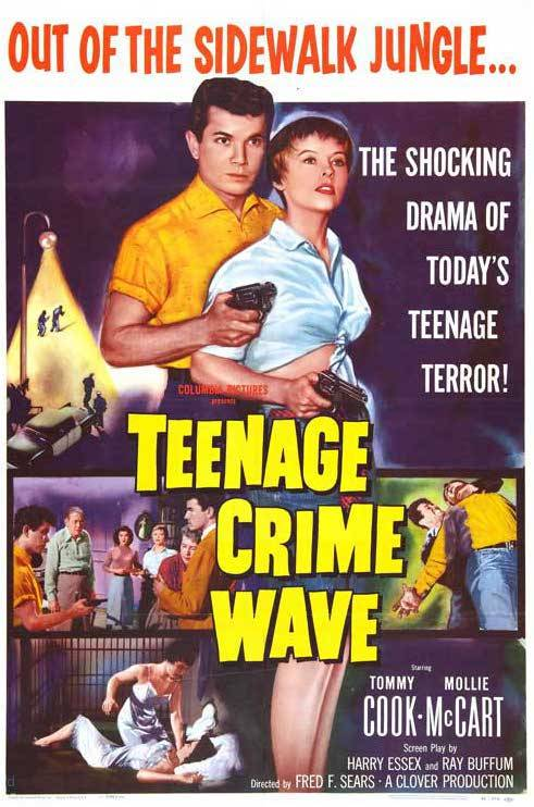 denise-puchol:  teenage crime wave 1955 (wrongsideofart)