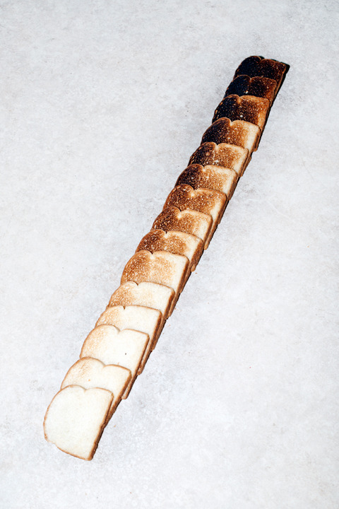 thingsorganizedneatly:  Van Robinson ed: Let's keep it going for bread! Woo!  I've had both of these photos on my blog before, but I need to clarify, whose bread photo is whose. The above photo is by Van Robinson, but does anyone know who made this photo, please??  my first thought was this is how i should help m tan this summer, finally.